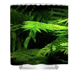 Ground Cover Adornments Shower Curtain