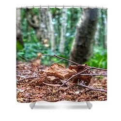 Shower Curtain featuring the photograph Ground Cover by Isabella F Abbie Shores FRSA