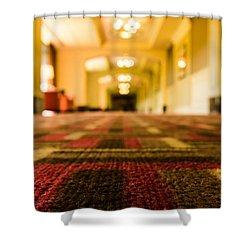 Ground Level Shower Curtain