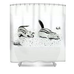Ground Squirrels Shower Curtain