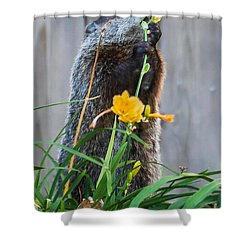 Groundhog And Flowers Shower Curtain by Edward Peterson