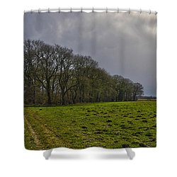 Group Of Trees Against A Dark Sky Shower Curtain