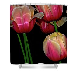 Grouping Ofpink And Yellow Tulips Shower Curtain