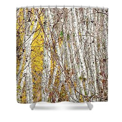 Grove 2 Shower Curtain