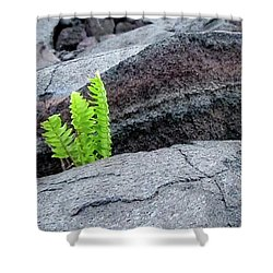 Grow Where You Are Planted Shower Curtain