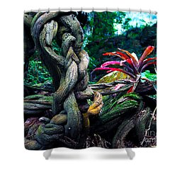 Grow Where You're Planted II Shower Curtain