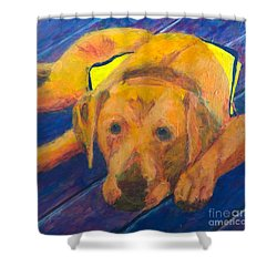Shower Curtain featuring the painting Growing Puppy by Donald J Ryker III