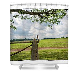 Growing Season Shower Curtain by R Thomas Berner