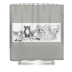 Growing Up Chinese Crested And Powderpuff Shower Curtain