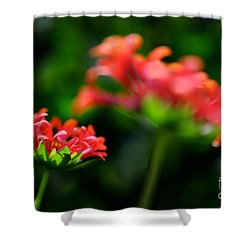 Growing Up Shower Curtain by Lois Bryan
