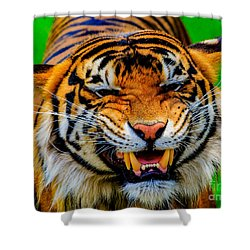 Growling Tiger Shower Curtain
