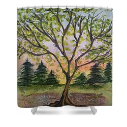 Growth Shower Curtain by CB Woodling