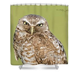 Grumpy Dad Shower Curtain