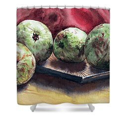 Guapples Shower Curtain