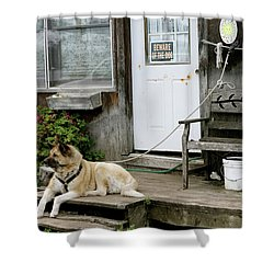 Shower Curtain featuring the photograph Guarded by Brandy Little