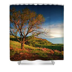 Shower Curtain featuring the photograph Guardian Of Light by John De Bord