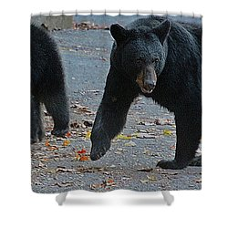 Guarding Her Cubs Shower Curtain by DigiArt Diaries by Vicky B Fuller