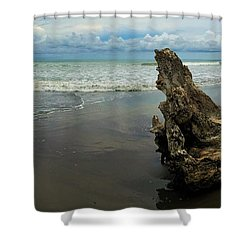 Guarding The Shore Shower Curtain by Pamela Blizzard