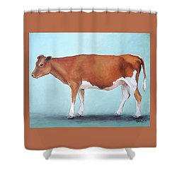 Guernsey Cow Standing Light Teal Background Shower Curtain