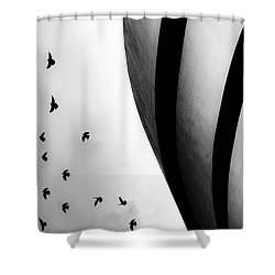 Guggenheim Museum With Pigeons Shower Curtain