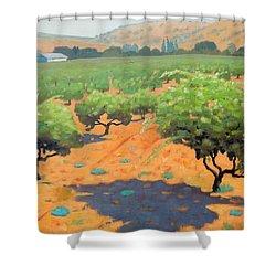Guglielmo Winery Shower Curtain