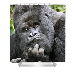 Guhonda Shower Curtain