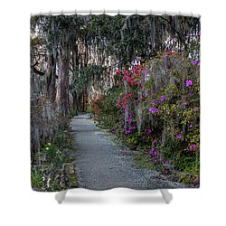 Guide Our Feet Into The Path Of Peace. Luke 1.79  Shower Curtain
