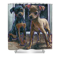 Shower Curtain featuring the painting Guinness And Bailey by Nadi Spencer