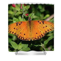 Gulf Fritillary Butterfly Shower Curtain