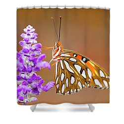 Gulf Fritillary Shower Curtain by Shelley Neff