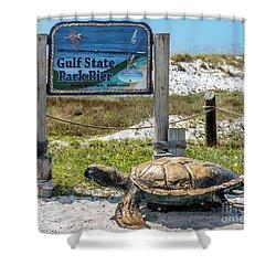 Gulf Shores Al Beach And Pier Turtle 1603a Shower Curtain