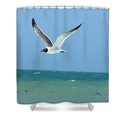 Gull And Girl Shower Curtain