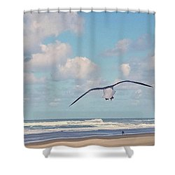 Gull Getaway Shower Curtain