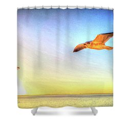 Gull In Sky Shower Curtain