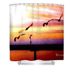 Shower Curtain featuring the photograph Gull Play by Sadie Reneau