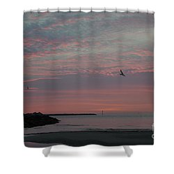 Gull Sunset Shower Curtain