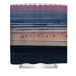 Gulls At Sunset Shower Curtain