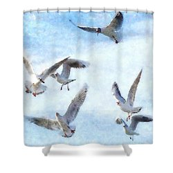 Gulls In Flight Watercolor Shower Curtain