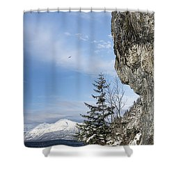 Gulls Of Winter Shower Curtain by Michele Cornelius