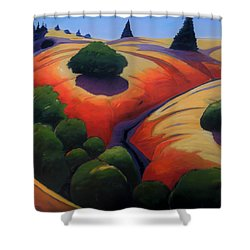 Gully Shower Curtain