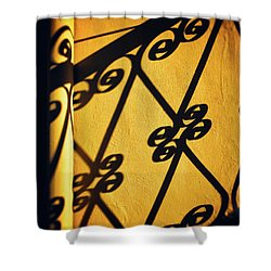 Shower Curtain featuring the photograph Gutter And Ornate Shadows by Silvia Ganora