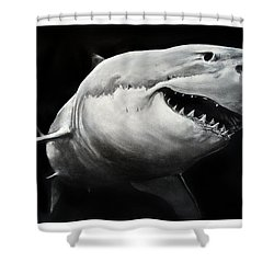 Gw Shark Shower Curtain
