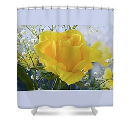 Gypsophila And The Rose. Shower Curtain by Terence Davis