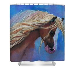 Gypsy In The Wind Shower Curtain by Karen Kennedy Chatham