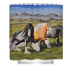 Gypsy Medley Shower Curtain by Ruanna Sion Shadd a'Dann'l Yoder