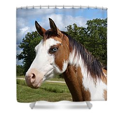 Gypsy Paint Shower Curtain