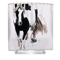 Shower Curtain featuring the painting Gypsy Vanner by Isabella F Abbie Shores FRSA