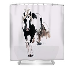 Gypsy Vanner Shower Curtain