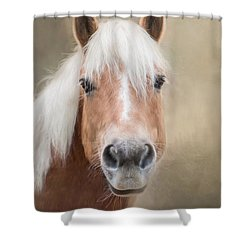Shower Curtain featuring the photograph Haflinger by Robin-Lee Vieira