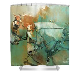 Haflinger Team Shower Curtain by Kathy Russell